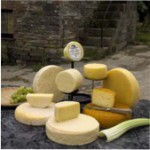 Pant Mawr Cheese