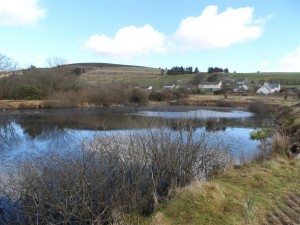 bungalow-pembrokeshire-coast-national-park-welsh-holiday-letting-well-stocked-fishing-lake-57-3405599_2400_1800